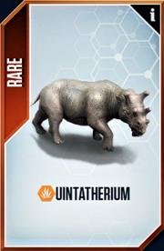 Urintotherium Card