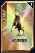 Eucladoceros New Card