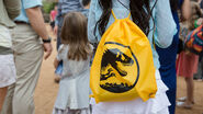 Yellow-backpack