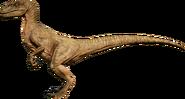 RaptorArid render