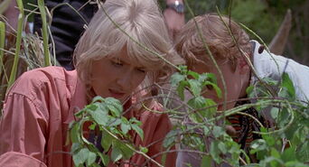 Jurassic-park-movie-screencaps.com-6106
