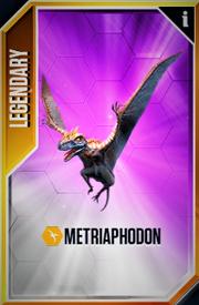 Metriaphodon New Card