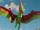 Tango (Pteranodon)