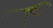 Compsognathus (2)