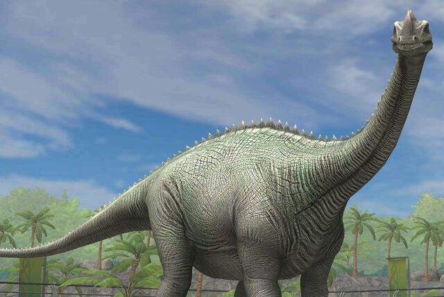 File:Supersaurus Vivianae (17).jpg