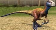 Utahraptor lvl 20