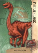 2001 Jurassic Park III 3-D 66 Gallimimus front