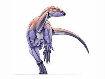 Atlas copco lizard