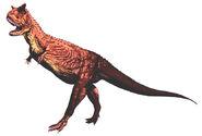Carnotaurus r t w