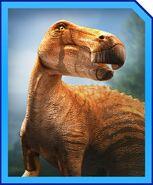 EdmontosaurusProfile