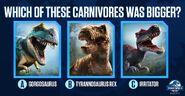 Dino Size Quiz