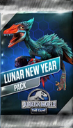 Lunar New Year Pack