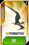 Pteradactylus