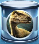 Velociraptor Common Incubator (Grey)
