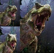 Bull rex