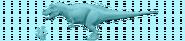 Acrocanthosize