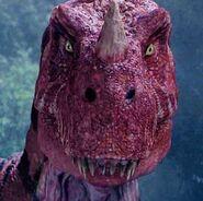 Ceratosaurus23