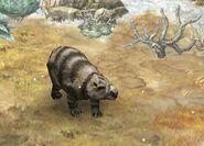 Diprotodon 19