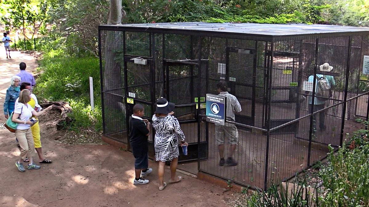 Jurassic World Aviary | Jurassic Park wiki | FANDOM powered by Wikia