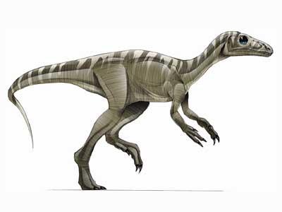 Recreación De Algunas Las Principales Especies Dinosaurios Reptiles Voladores Y Lagartos Que Vivieron