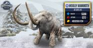 Max Woolly Mammoth