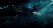 New-jurassic-world-movie-clip-featuring-lauren-lapkus--2-international-tv-spots-featuring-more-raptor-action-released