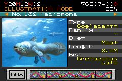 132 - macropoma