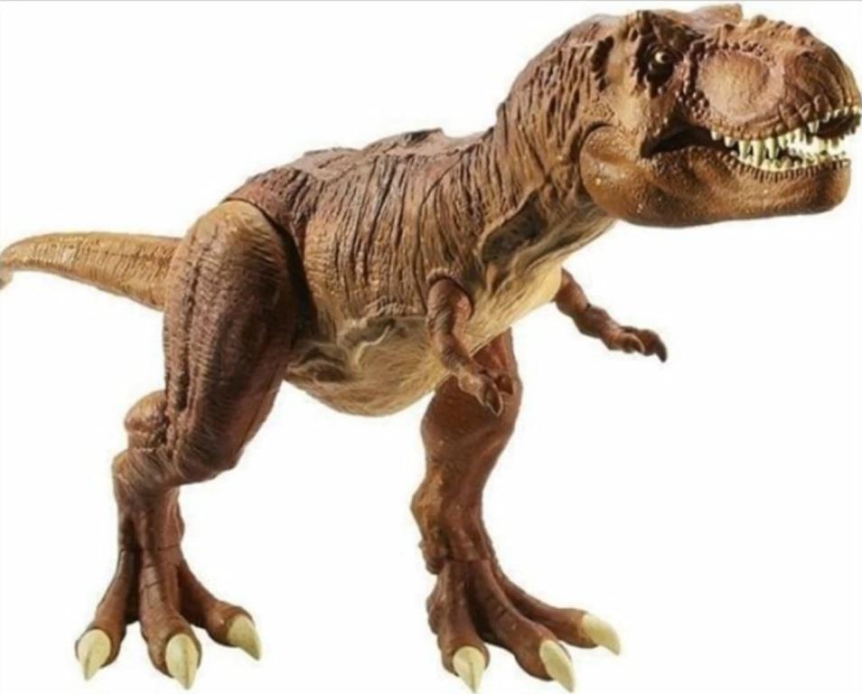 Image - Anatomy Kit T-Rex Fully Assemble.jpg | Jurassic Park wiki ...