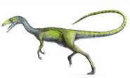 Compsoghnathus image medium