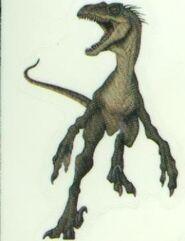 Male Raptor Artwork