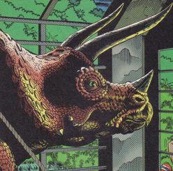 Triceratopstopps