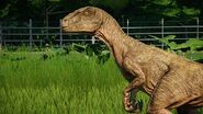 Raptor Clever-Girl-1-768x432