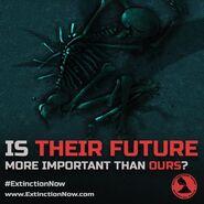 Extinction Now!