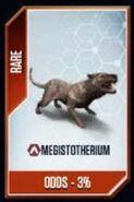 Megistotherium Card Chances