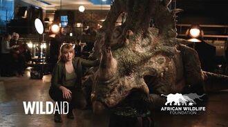 "African Wildlife Foundation Bryce Dallas Howard ""Save The Rinos"" - Jurassic World Fallen Kingdom-0"