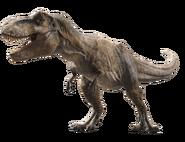 Jurassic world fallen kingdom tyrannosaurus v3 by sonichedgehog2-dcb00cn
