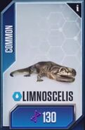 Limnoscelis