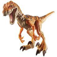 Raptor164321001