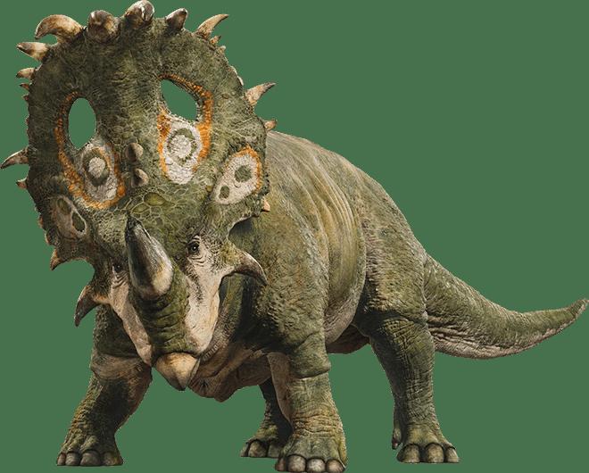 Jurassic_world_sinoceratops_by_sonichedgehog2-dc9dg8x.png