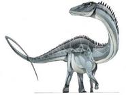 JPI Dystylosaurus