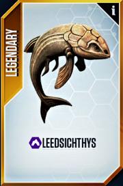 Leedsichthys Card