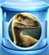 Velociraptor Common Incubator