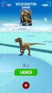 Velociraptor Map