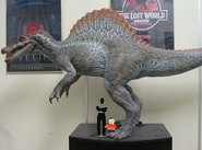 Spino jp3