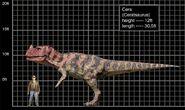 Ceratosaurus comparacion