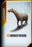 Indricotherium card