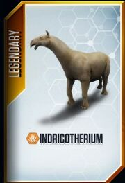 Indricotherium card