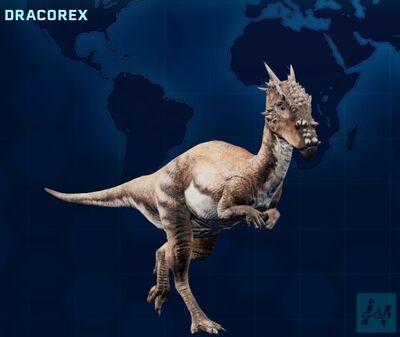 Dracorex JWE
