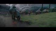 Юныйаллозавр