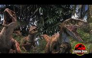 Mutliraptor